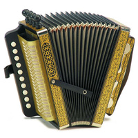 Hohner Vienna Model 114C Diatonic Accordion in Gold Brand