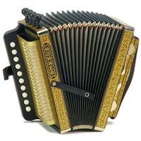 Hohner Vienna Model 114D Diatonic Accordion in Gold Brand
