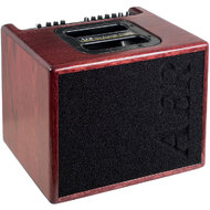 "AER ""Compact 60"" Acoustic Instrument Amplifier In Oak with Mahogany Stain Finish (60 Watt)"