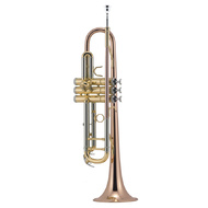 J.Michael TR450 Trumpet (Bb) in Clear Lacquer Finish