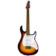 Peavey Raptor Custom Series Electric Guitar in Sunburst (3SC)